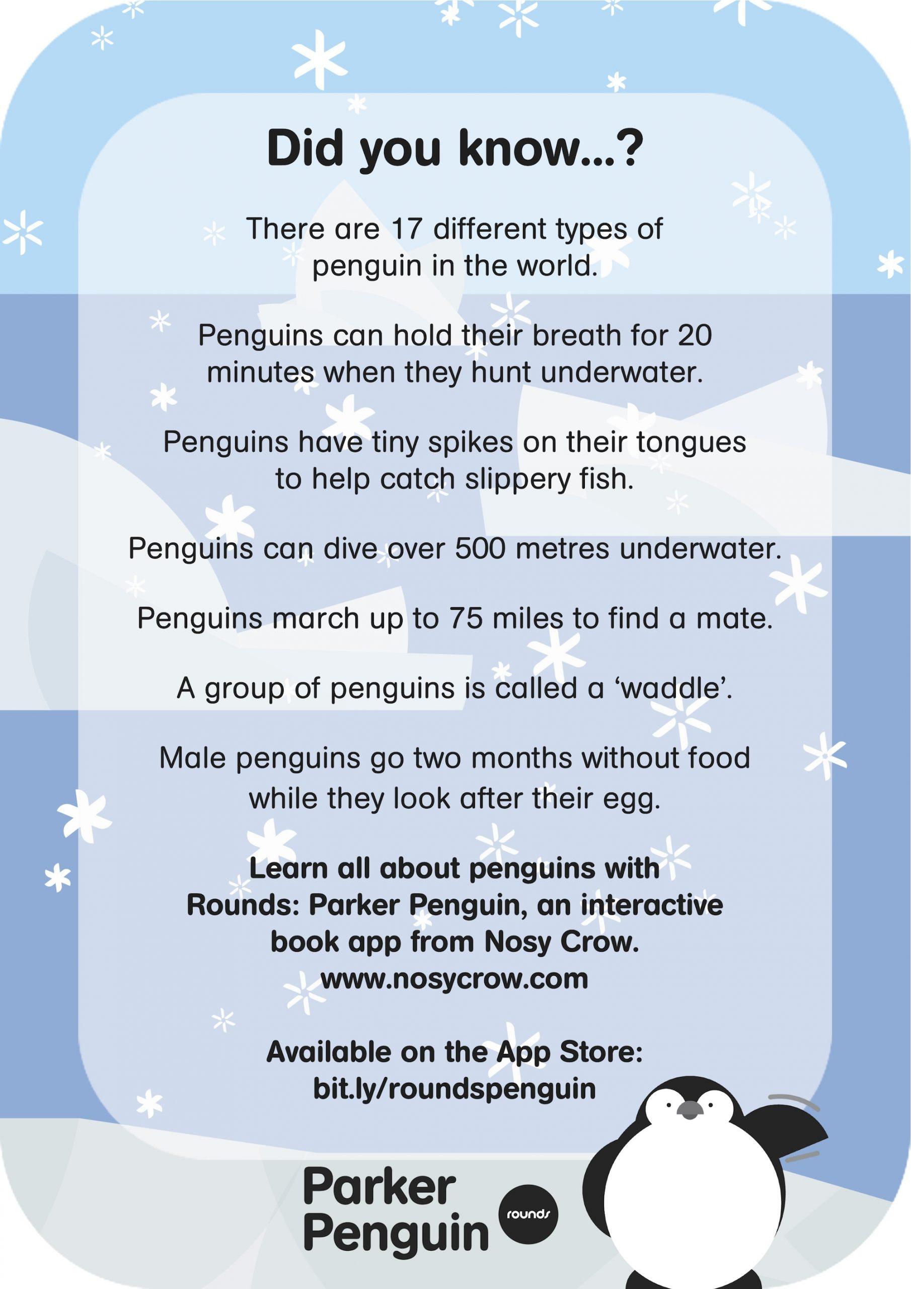 Rounds: Parker Penguin